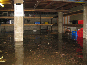 Picture of a flooded basement